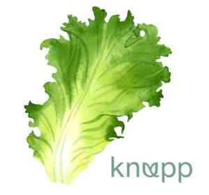 <span>Knupp &#8211; drivhuskatalog</span><i>→</i>