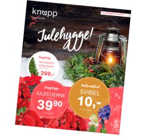 <span>Julehygge</span><i>→</i>